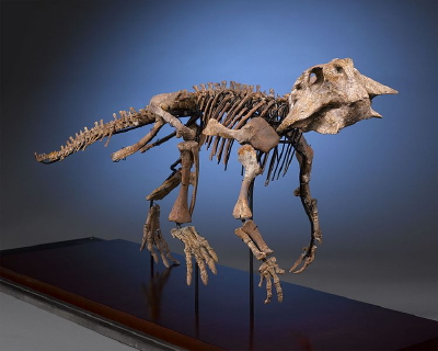 These fossils may capture the day the dinosaurs died